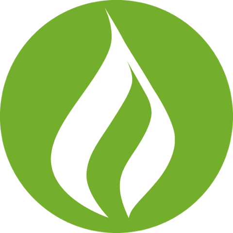 Biomass Energy Design Service Companies in the World in