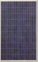Picture of Canadian Solar CS6P-235PX NewEdge Polycrystalline Panel