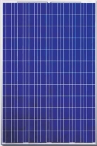 Picture of Canadian Solar CS6P-240P 240 Watt Solar Panel