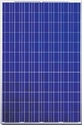 Picture of Canadian Solar CS6P-250P 250W Solar Panels in Pallet